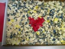 Callie's mosaic
